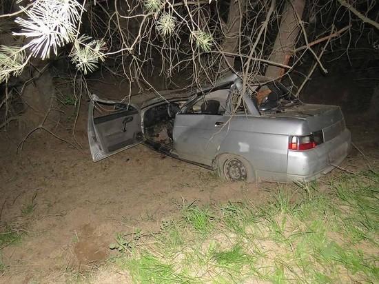 В Удмуртии водитель на автомобиле ВАЗ врезался в дерево