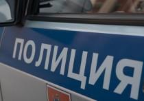 В Москве полиция со стрельбой задержала грабителей