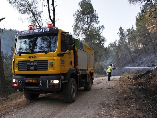 Самый популярный и опасный детский праздник: леса Израиля в опасности