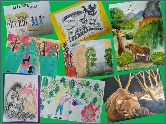 Рисунки юных салехардцев о защите природы развесят в лесах