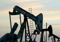 Нефтехимическое развитие «Роснефти»