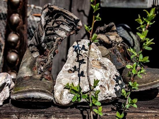 Избитый и мертвый: в Туле обнаружили труп мужчины