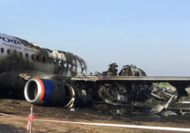 Семье погибшего в авиакатастрофе в «Шереметьево» ярославца выплатят 2 млн рублей