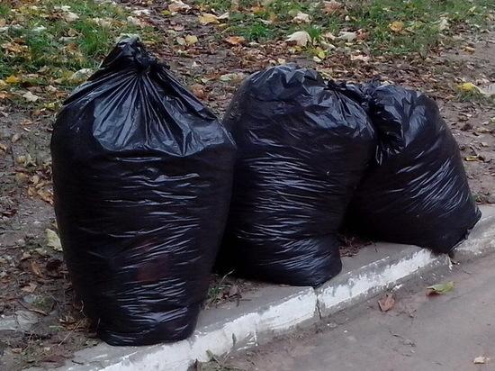 Ярославские власти не могут вывезти мусор после апрельского субботника