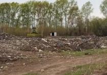 Свалка, обнаруженная в Центральном районе Барнаула, беспокоит жителей Бельмесево