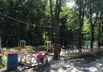 Депутаты и журналисты убедились в наличии детской площадки в рязанском Лесопарке