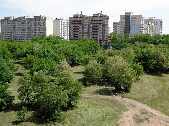Кондратьев поручил построить парк вместо ТЦ в Молодежном микрорайоне Краснодара