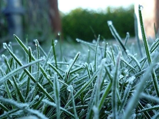 Погода на понедельник: в низинах до 0 градусов