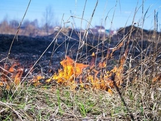 В Калмыкии сохраняется высокая пожароопасность