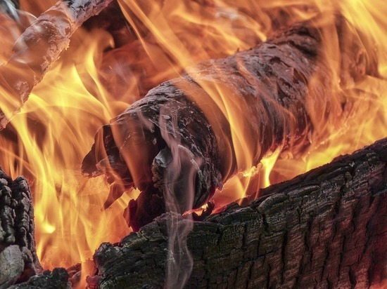 Восемь грозящих перейти в леса возгораний действуют в Забайкалье