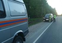 Иномарка сбила косулю на трассе под Калугой