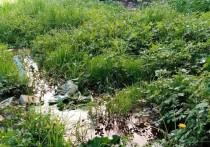 В Богородицке потекли канализационные ручьи
