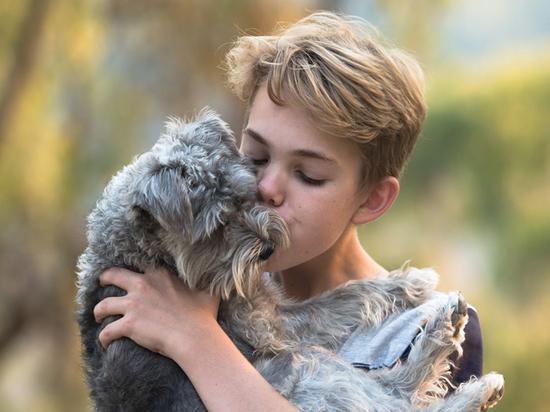 Обнаружены «гены любви к собакам»