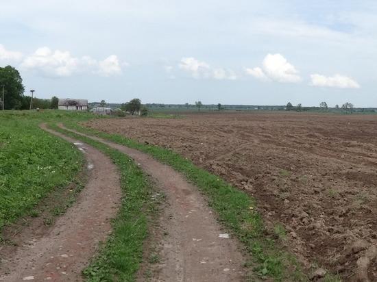 Как Анна Шендерюк-Жидкова не стала фермером, но получила 6 га земли