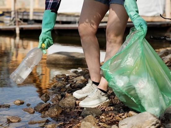Мужчина заставил мусоривших в лесу барнаульцев забрать отходы с собой