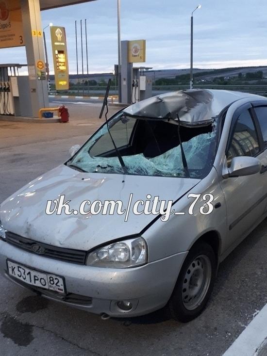 После столкновения с лосем под Ульяновском пассажирка ВАЗа госпитализирована