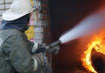 Возможную причину пожара у торгового центра в Чите назвали в МЧС