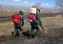 Тушить пожары в Забайкалье помогает доброволец из США
