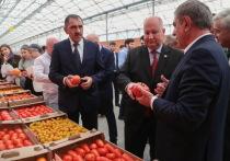 В Ингушетии запустили первую очередь крупнейшего в СКФО агрокомплекса