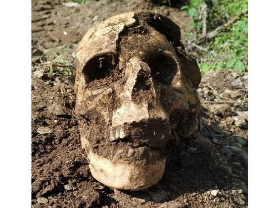 В Ростовской области обнаружили останки пехотинца, погибшего в сражениях ВОВ