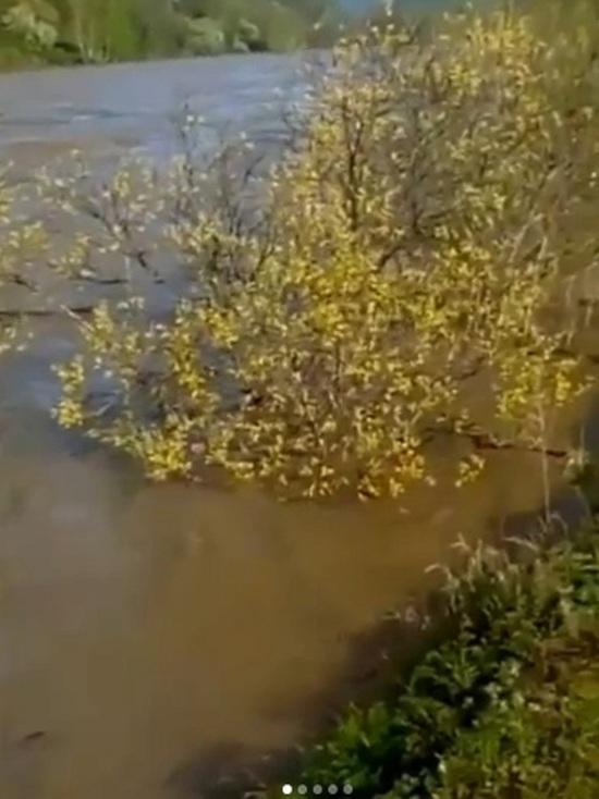 Вторая волна паводка пришла на Алтай