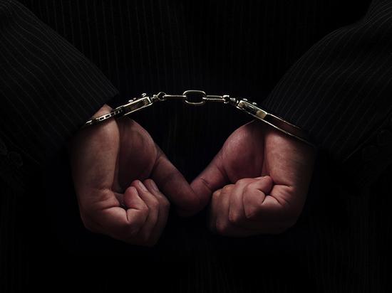 В Дзержинском районе Ярославля задержан педофил