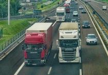 В Список самых высокооплачиваемых профессий в России по состоянию на май 2019 года попали батлеры, водители грузового транспорта и … нянечки
