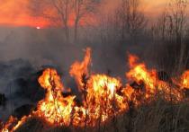 МЧС предупреждает о задымлении в Иркутске