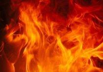 Иномарка полностью сгорела в Салехарде за несколько минут
