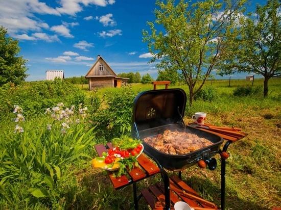 Владимирцы среднего возраста все чаще отдыхают на даче
