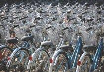 Жителей Тарко-Сале приглашают на велопробег