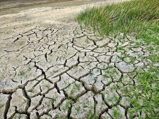 Ученые поспорили, что нас ждет: глобальное потепление или похолодание