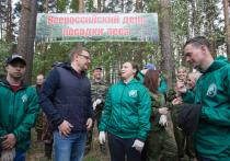 Алексей Текслер принял участие во Всероссийском дне посадки леса