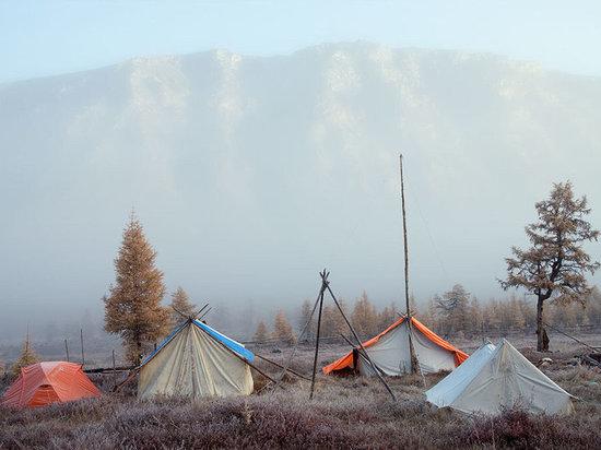 ПОРА развивать экологический туризм в Арктике