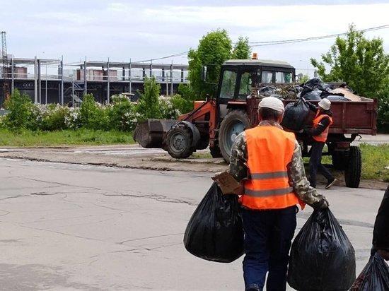 Единый день чистоты и порядка пройдет в Ульяновске