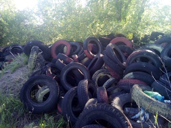 Несанкционированную свалку автопокрышек в Ульяновске переработают