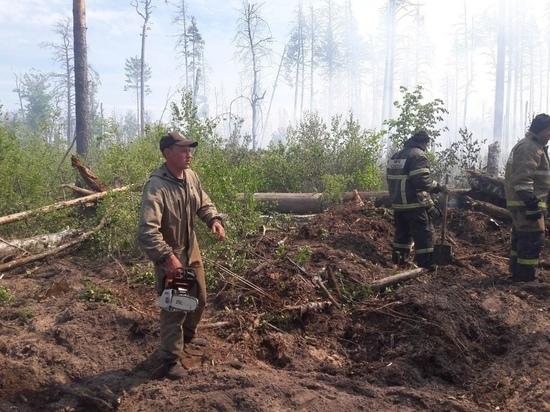 Пожары в заповеднике Мордовии тушат больше 100 человек