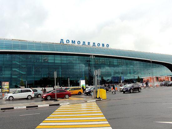 """В Домодедово умер """"авиадебошир"""", из-за которого вернули самолет"""