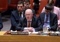 Небензя выразил обеспокоенность применением ударных беспилотников для борьбы с террористами