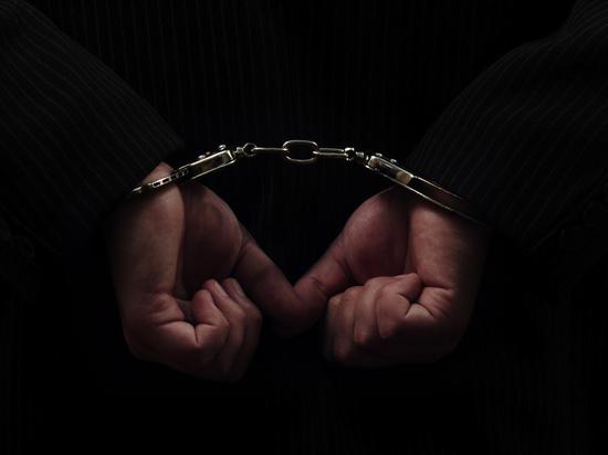 В Дзержинском районе Ярославля поймали 46-летнего педофила