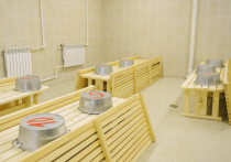 В Починковском районе может появиться новый ДК и откроется баня