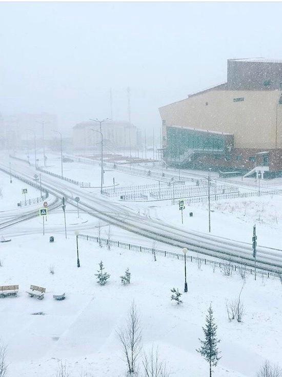 Ямальцы борются со снежным коллапсом и посвящают ему стихи