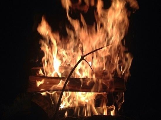 Специальные учения по тушению лесных и торфяных пожаров прошли на Вологодчине