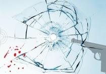 Кировчанин устроил стрельбу в воздух и попал в окно дома