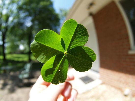 Июнь станет «месяцем удачи» для четырех знаков Зодиака