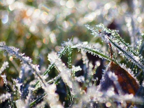 В Мордовии прогнозируют ночные заморозки
