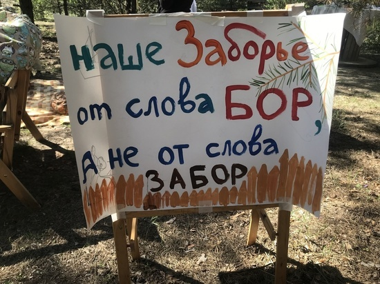 Жители рязанского села выступают против продажи зеленой зоны частным лицам