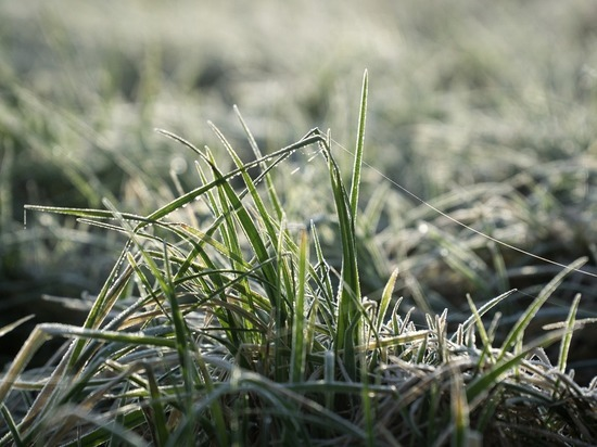 В Удмуртии температура воздуха ночью с 25 на 25 мая опустится до - 3℃