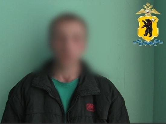 Ярославская полиция поймала поджигателя мусорных контейнеров «Хартии»