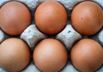 Россельхознадзор отнял шесть яиц у пересекающего границу РФ гражданина Финляндии